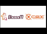 이스포츠 브랜드 팀 블라썸 (Team BlossoM) & 게이밍 기어 브랜드 콕스 (COX) 스폰서십 연장 체결